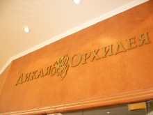 Металлические буквы и логотип из нержавеющей стали